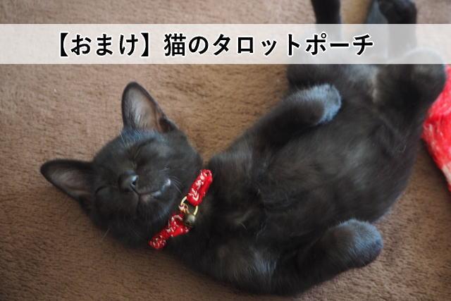 【おまけ】猫のタロットポーチ