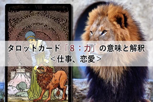 タロットカード「8:力」の意味と解釈<仕事、恋愛>